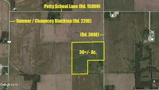 Petty Township Aerial