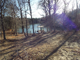 3/2 160± ACRES * HOME/CABIN * SPRING FED POND * TIMBER * GRASS PASTURE