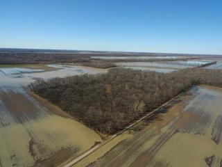 ABSOLUTE AUCTION -- GIBSON COUNTY LAND TRACTS
