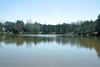 1+ Acre Waterfront Level Lot