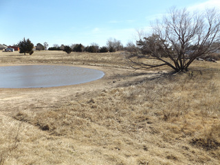 4/6 87± ACRES * HOMESITE POTENTIAL * IMPROVED GRASS