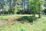 PROPERTY # 9 ALBANY, GA MULTI PARCEL AUCTION