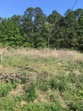PROPERTY # 27 ALBANY, GA MULTI PARCEL AUCTION