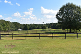Hunting Land For Sale in Pearl County, MS