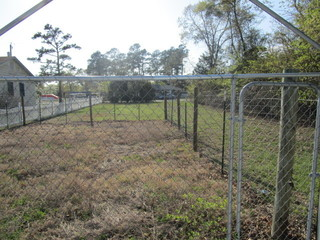Fenced In Area