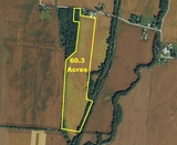 60 Acres in Southern Champaign County