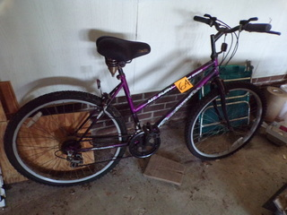 Roadmaster 12 Speed Bicycle