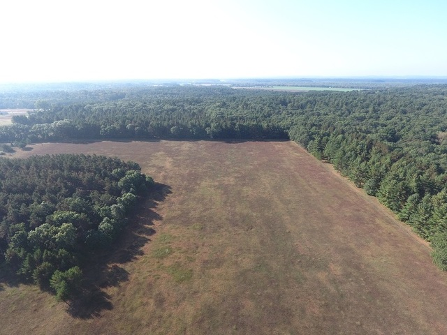 Auction - Prime Wisconsin Hunting Lodge & Acreage