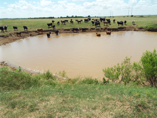 8/9 160± ACRES SURFACE * NOBLE COUNTY * GARBER/BILLINGS AREA