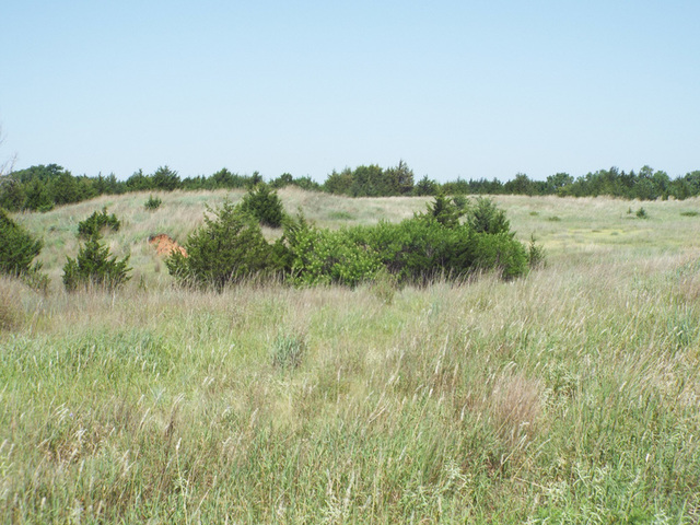 8/17 480± ACRES SURFACE RIGHTS * MINERALS * ALFALFA AND GRANT COUNTY