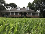 Historic Home - Centreville, MS