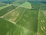 Top Producing Central Saunders County Farmland Absolute Auction