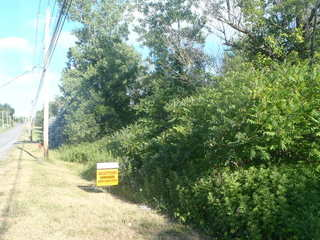 Real Estate AUCTION - Vacant Residential Land