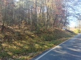 For Sale...95 Acre Wooded Hunting Tract