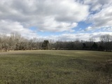 33.2 +/- Acre Farm in Quinton Township