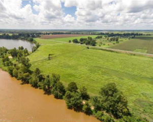 Waterfront Lots For Sale at Auction on Red River in Coushatta, LA