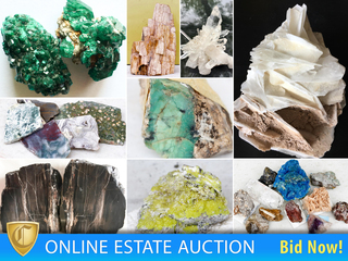 50 Year Rock, Mineral Collection, Tourmaline, Crystals, Amethyst, Fossils, Petrified Wood