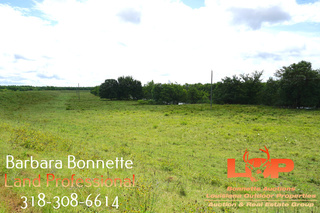 389 +/- Acres in Boyce, LA