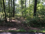 Attention Builders & Dreamers: - 5.12 +/- Acres in Elk Township