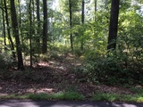 Attention Builders & Dreamers: - 4.50 +/- Acres in Elk Township