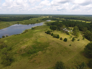 PASTURE LAND FOR SALE IN POPLARVILLE, MS AT ONLINE AUCTION