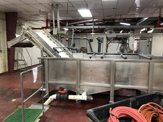 Wash Tank W/ Incline Conveyor: