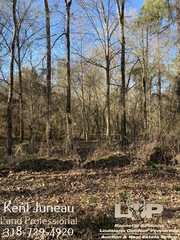 62.72-acre tract in Avoyelles Parish For Sale