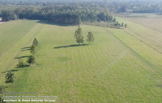31.63± Acres and Homesite FOR SALE in Cottonport, LA