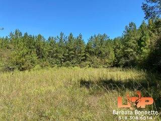 212.51± Acres of Hunting Land FOR SALE in Leesville, LA