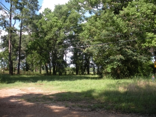 Waterfront Lot on Spring Bayou For Sale