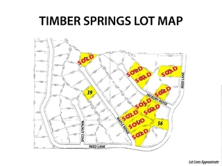 ONLINE LOT AUCTION * TIMBER SPRINGS ESTATES * TRIMBLE, MISSOURI - BIDDING ENDS TODAY!