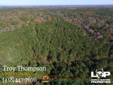 80 +/- acres of land for sale in Caldwell Parish