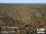 647 +/- acres of land for sale in Caldwell Parish