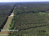 117 acres of land for sale in Grant Parish