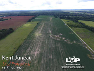 113 +/- acres of farmland for sale in Mansura, LA