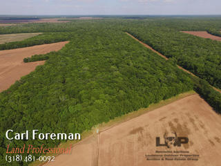 66 acres of hunting land for sale in Avoyelles Parish
