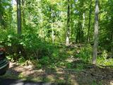 13.79 +/- Acre Wooded Lot in Elk Township